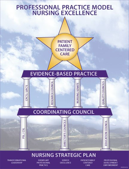 Billings Clinic Nursing Professional Practice Model for Nursing Excellence